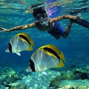 Snorkeling Keiki