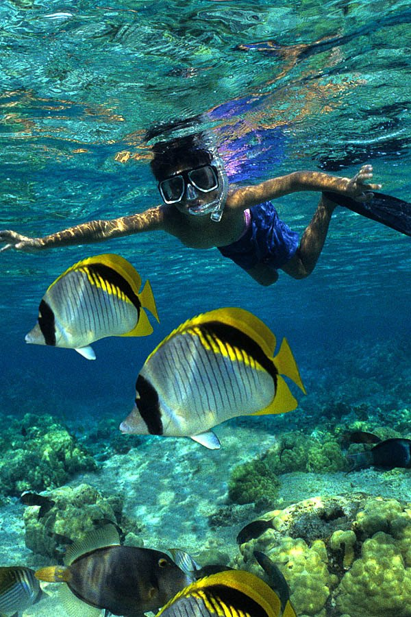 Image result for snorkeling picture